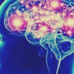 reaccion del cerebro al miedo 2